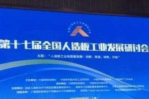 第十七届全国人造板工业发展研讨会在上海召开砂带抛光机
